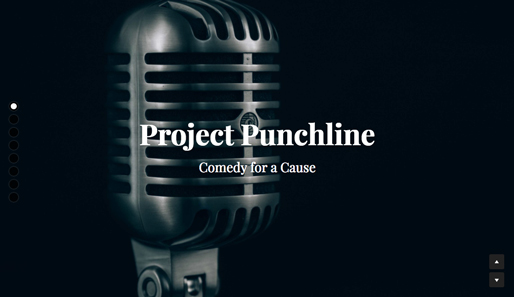 Project Punchline
