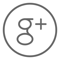 Google+ account icon